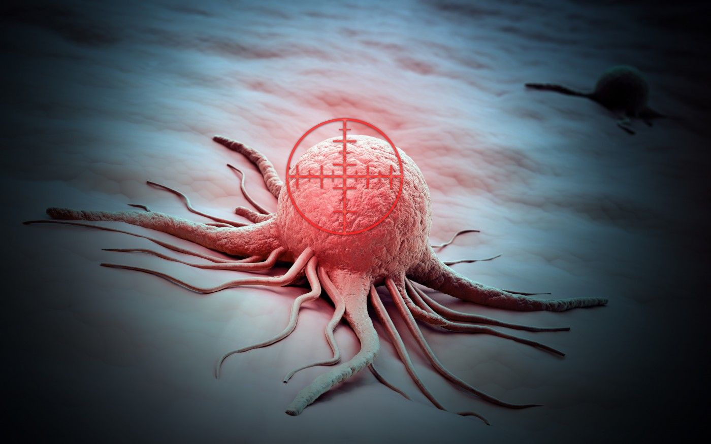 Triple Negative Breast Cancer Novel Immunotherapy Approach Developed