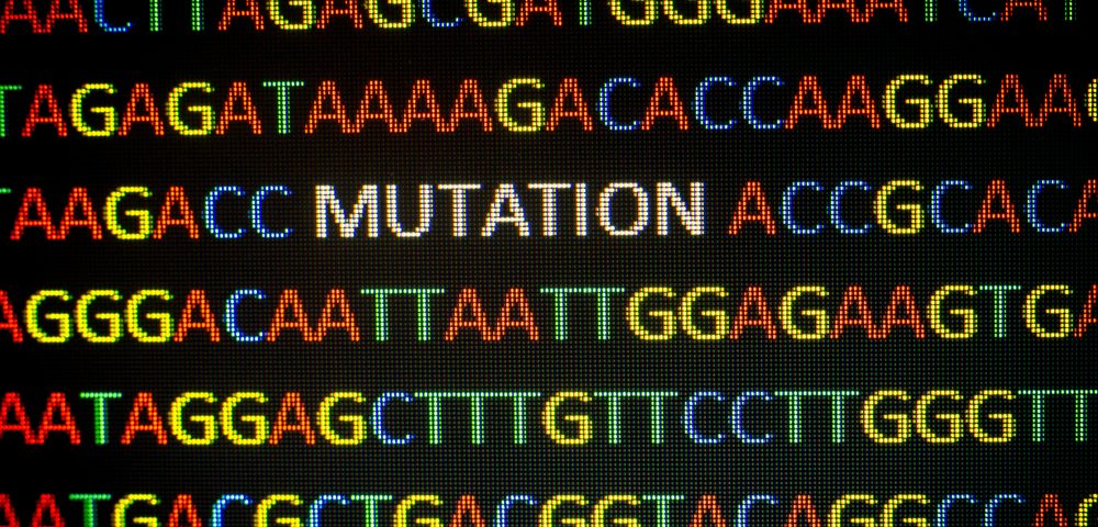Breast Cancer Patients May Benefit from Kataegis Multi-Mutation Phenomenon