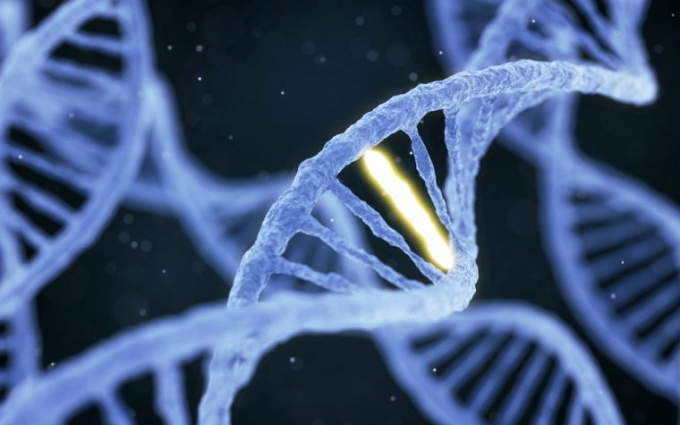 gene therapy and breast cancer