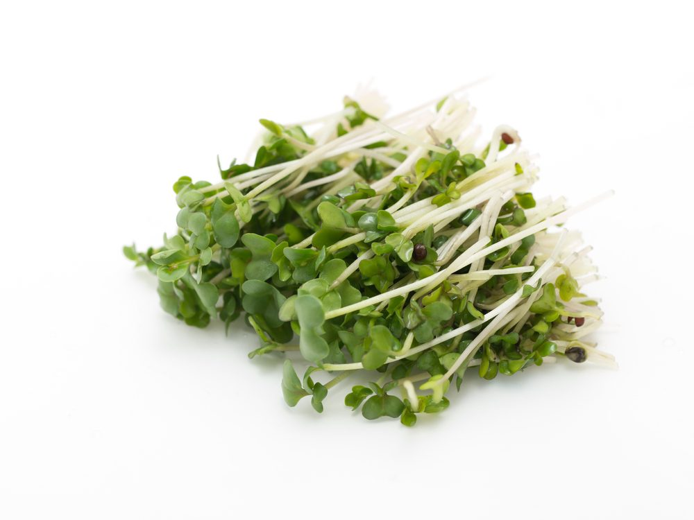Broccoli Sprouts Help Prevent Breast Cancer in Offspring of