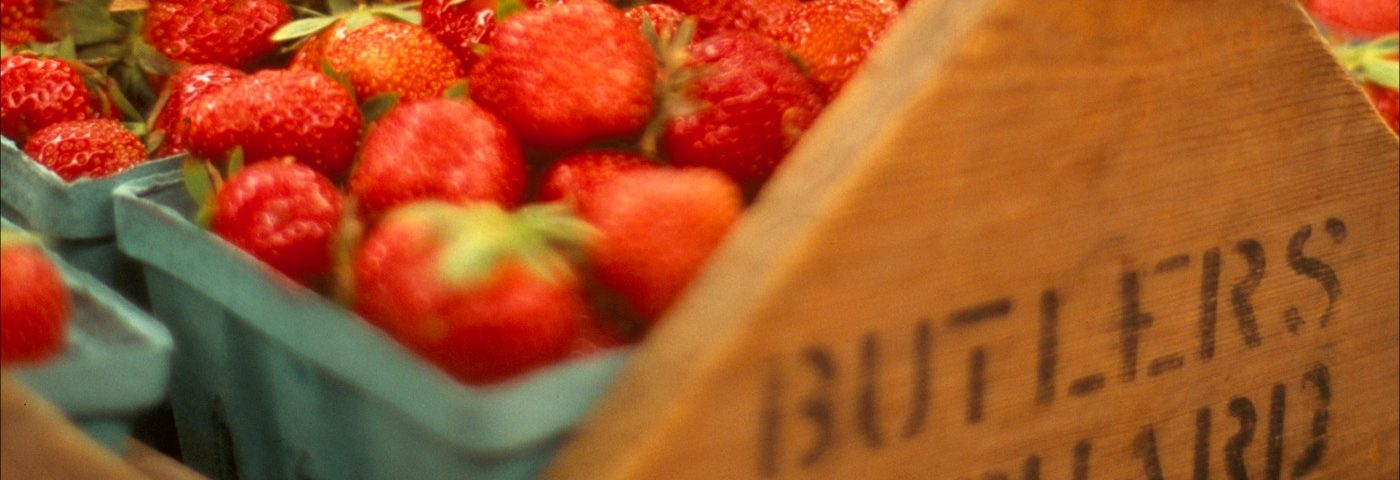 Eating Strawberries May Prevent Breast Cancer, Mouse Study Suggests