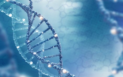 Genome Analysis of DNA from Nigerian Women Leads to 1st African Breast Cancer Risk Prediction Model